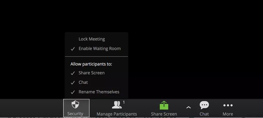 videoconferencing app Zoom