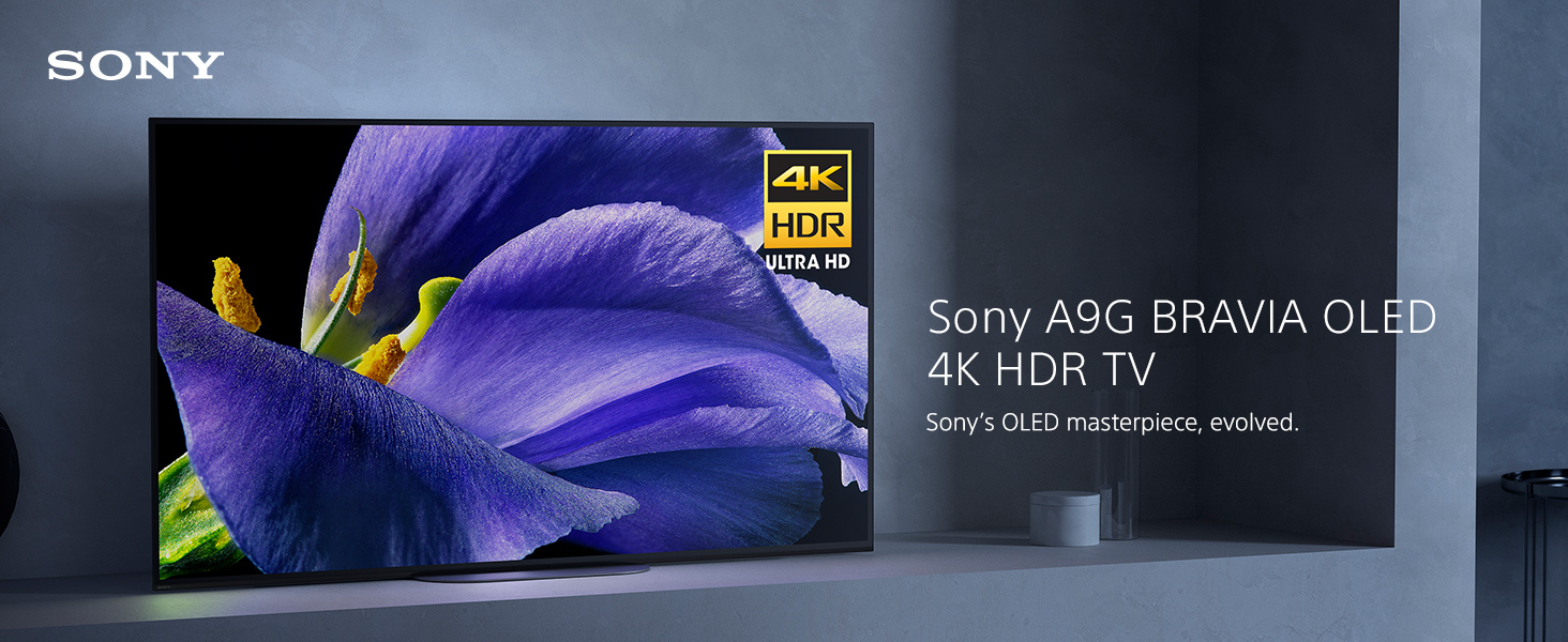 Sony Master Series A9G